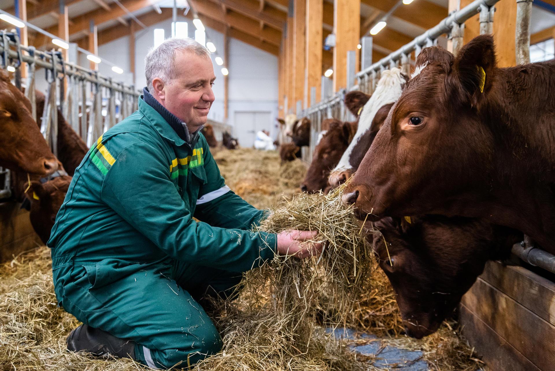 Bonde Jon Anstein Johansen har fått litt erfaring med klimakalkulatoren og oppfordrer alle bønder til å ta den i bruk. Foto: Sigurd Fossen/Sølvrev